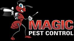 Termite Control Tempe AZ